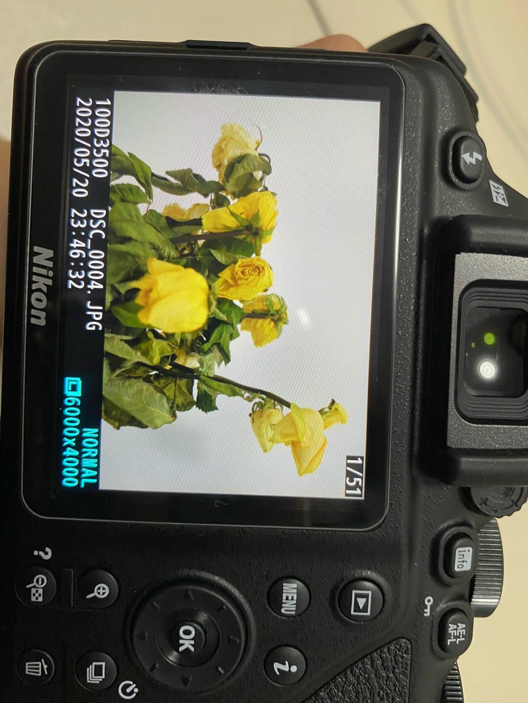 尼康(Nikon)D3500数码单反相机入门级高清数码家用旅游照相机D3400升级版尼康AF-P18-55套机(新手初学推荐)标配买就送实用大礼包