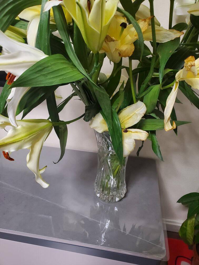 墨斗鱼玻璃菱形花瓶白色2876玫瑰百合富贵竹花器客厅茶几书桌电视柜书柜家居装饰品摆件
