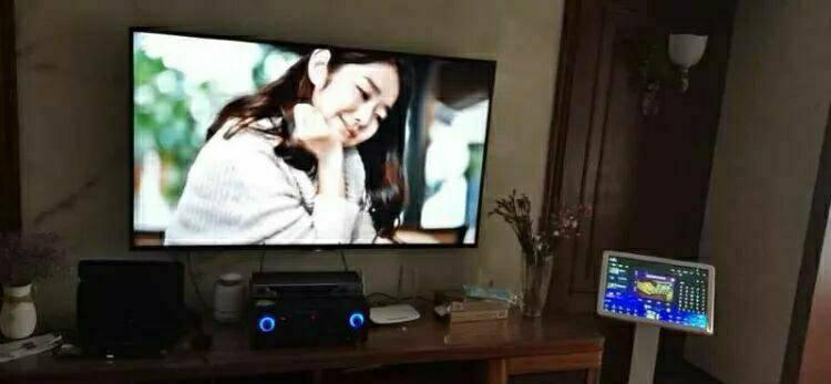 AONYKING家庭KTV点歌机家用网络K歌神器卡拉OK唱歌户外演出设备智能语音触摸电容屏点唱一体机19.5寸红外屏-500G硬盘