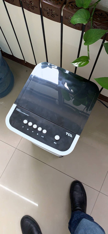 TCL上加水单冷冷风扇家用制冷电风扇客厅卧室移动冷风机机械控制大容量水冷空调扇TAC12-20BD