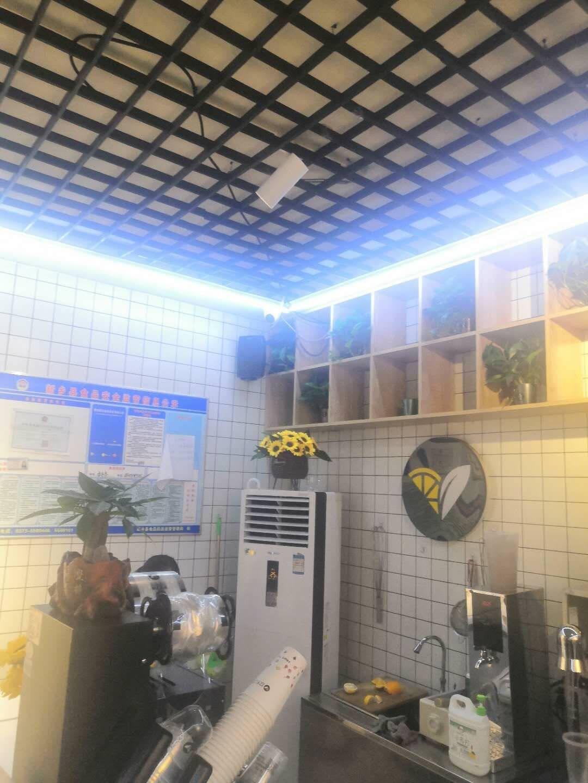 威斯汀(WESTDING)B05挂式音响音箱壁挂喇叭店铺餐厅广播喇叭高保真音响喇叭黑色