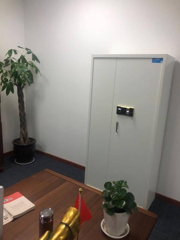 中伟保密柜文件柜档案柜储物柜保险柜双保险密码柜指纹锁通体双节文件柜带暗抽锁具升级款