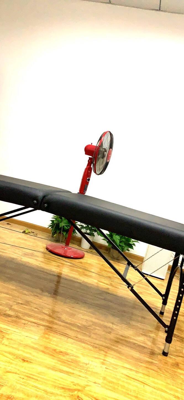 凯伦诗(CLORIS)德国品牌按摩床折叠美容床按摩折叠床理疗床便携式手提防滑推拿床纹绣床家用B308