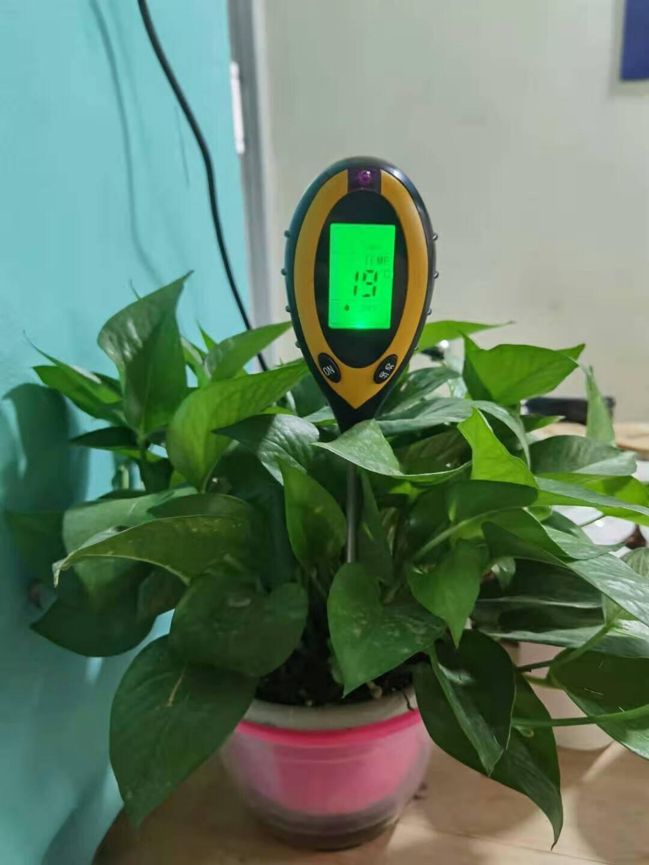 麦德牛MDN-1874四合一数显土壤检测仪探针式花卉园艺果木植物花盆PH酸碱度测试仪光照水分温湿度计配电池