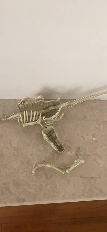 乐乐趣挖恐龙古生物探秘3D立体书3-6-10岁儿童手工游戏diy益智玩具书揭秘系列恐龙探索恐龙立体书
