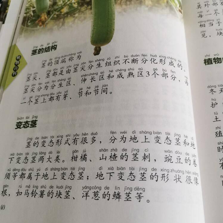 植物百科(儿童注音版)