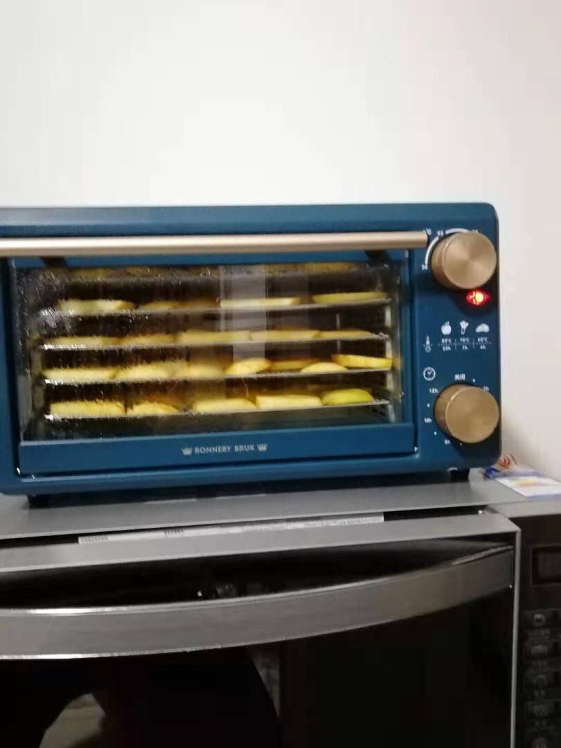 瑞徕德(RonnebyBruk)干果机水果蔬菜宠物肉类食物小型脱水风干机家用食品烘干机14L森墨绿系列食物风干机