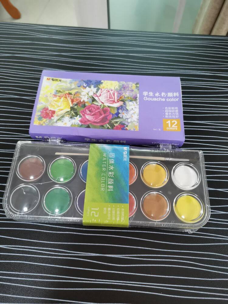 晨光(M&G)文具24色可水洗半干水彩颜料儿童美术绘画固体颜料(内含画笔1支)24支/盒APL97619