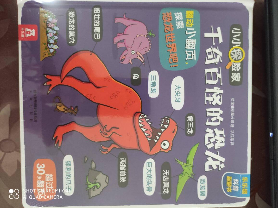 小小探险家翻翻书:千奇百怪的恐龙