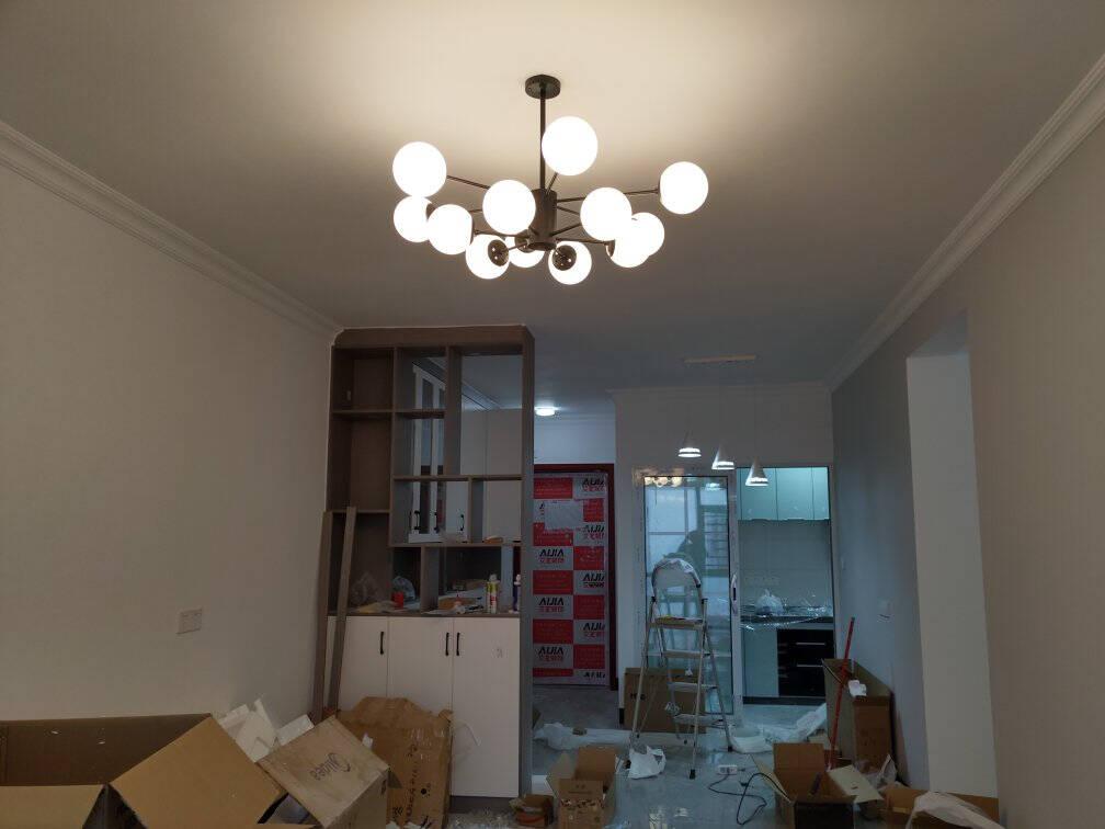 雷士(NVC)吊灯魔豆分子灯客厅卧室书房餐厅北欧灯具灯饰创意现代12头吊灯NGD12-1