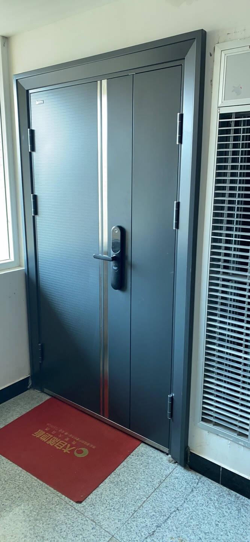 王力防盗门甲级安全大门进户门入户门子母门CL38智能锁门可配智能锁子母门指纹锁X6【开向可定制】