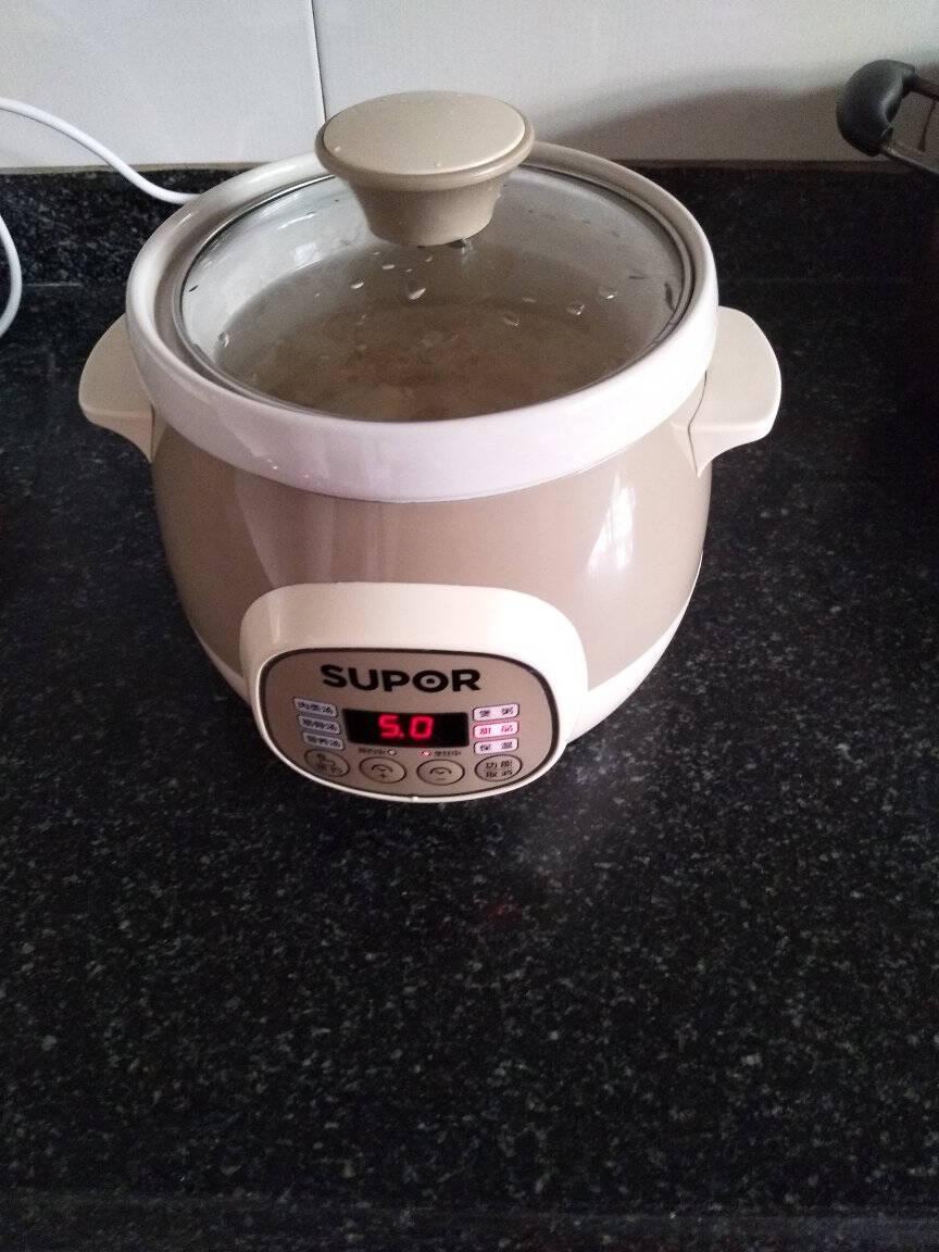 苏泊尔SUPOR电炖锅电炖盅煲汤锅炖汤锅煮粥锅紫陶内胆3升可预约定时DG30YC816