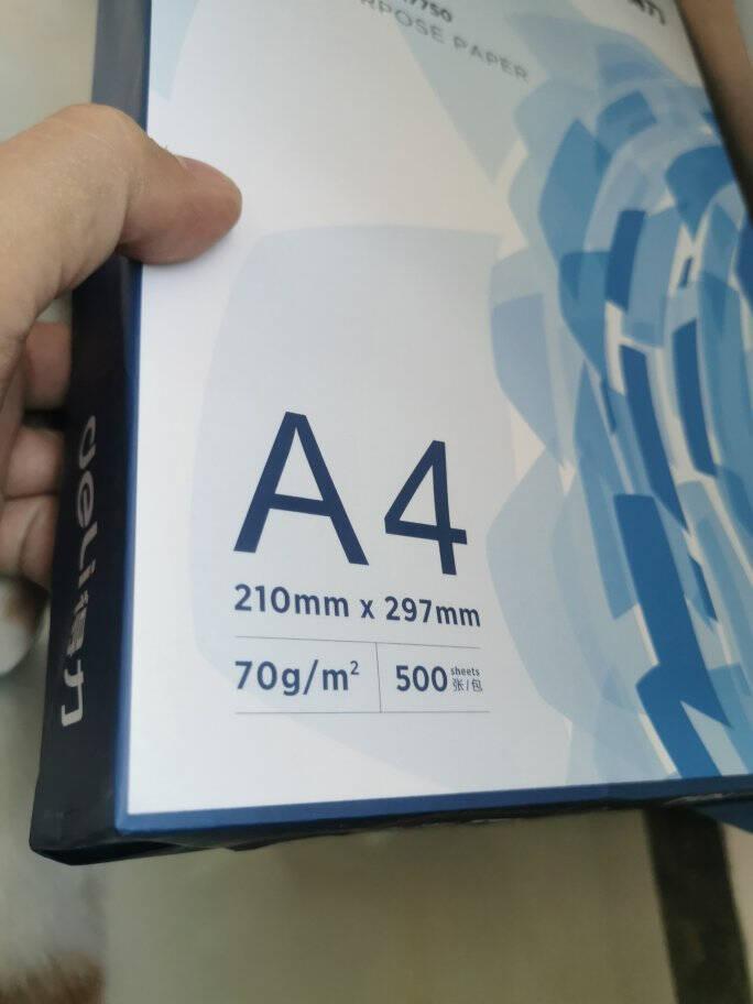 得力(deli)白令海70gA4复印纸打印纸500张/包8包1箱(整箱4000张)