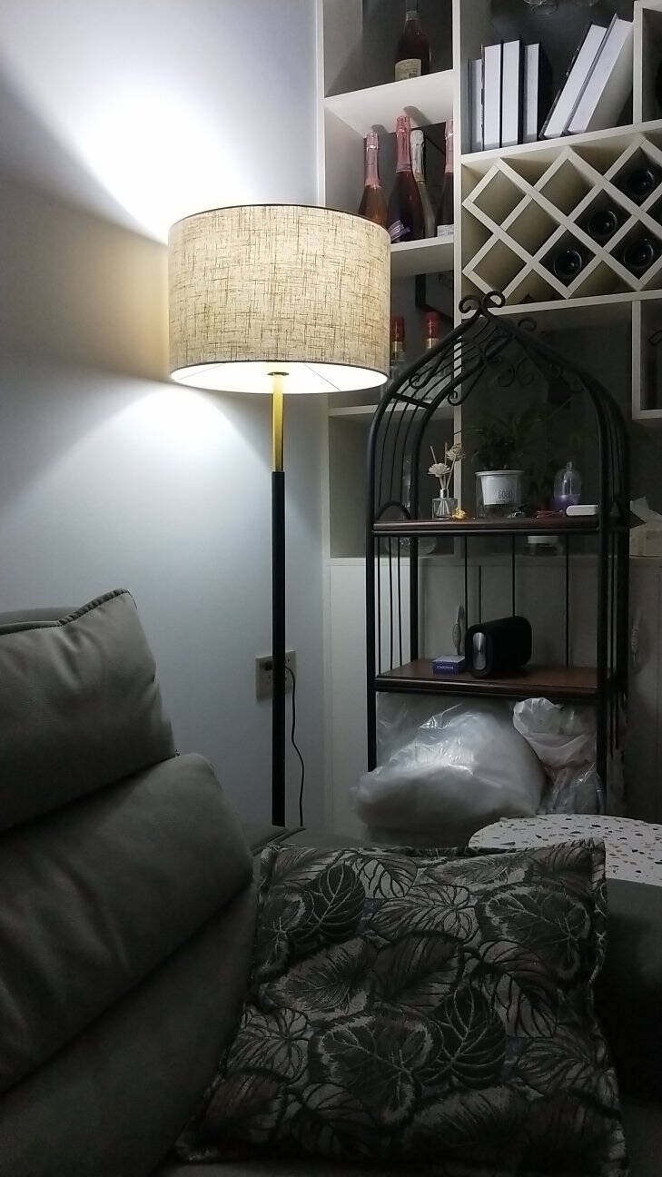 米沃(MIWO)现代简约落地灯客厅卧室立式地灯MWDS520FL黑色