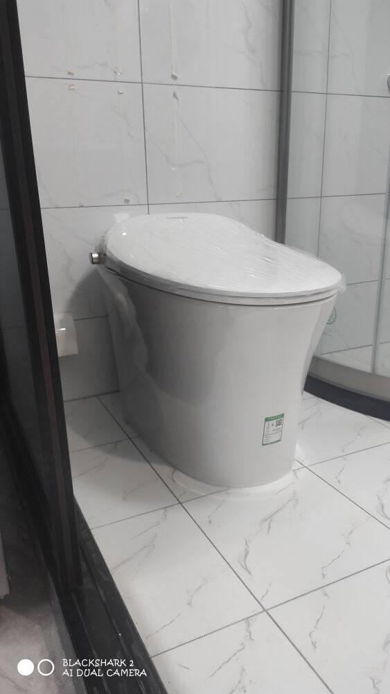 东芝(TOSHIBA)智能马桶水箱一体机洁身坐便器即热遥控A5-86D6305坑距