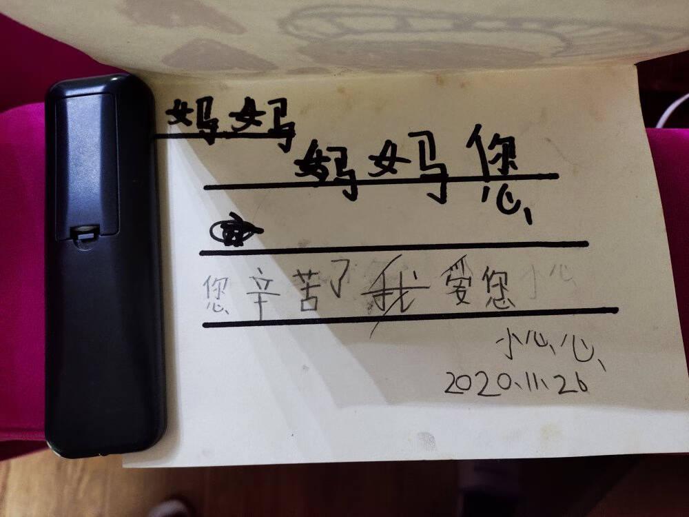 科大讯飞(iFLYTEK)阿尔法蛋词典笔Q3科大讯飞翻译笔中小学生英中英翻译机器电子词典阿尔法蛋词典笔Q3白色+原厂透明硅胶套