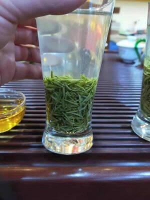 【2021明前新茶信阳原产毛尖】明前毛尖茶500克高山嫩芽春茶浓香型绿茶罐装特散装一级茶叶500g