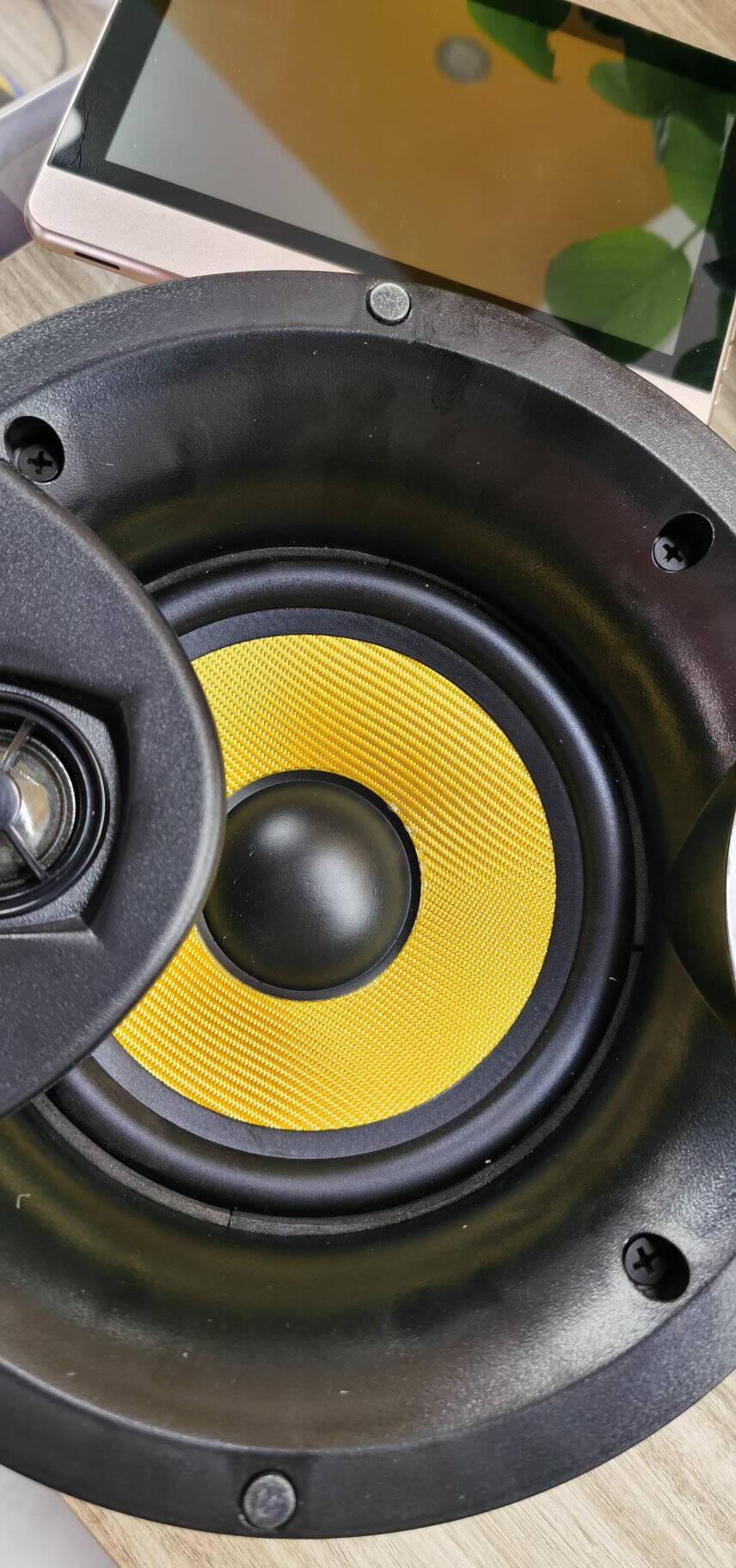 威斯汀(WESTDING)XT12智能家庭背景音乐主机系统套装家庭影院音响组合嵌入式吸顶音响喇叭XT12+918*4