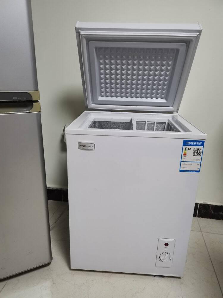 荣事达(Royalstar)小冰柜家用小型冷冻保鲜迷你冷藏商用卧式冷柜单用节能省电柜储母乳【省电款】175升