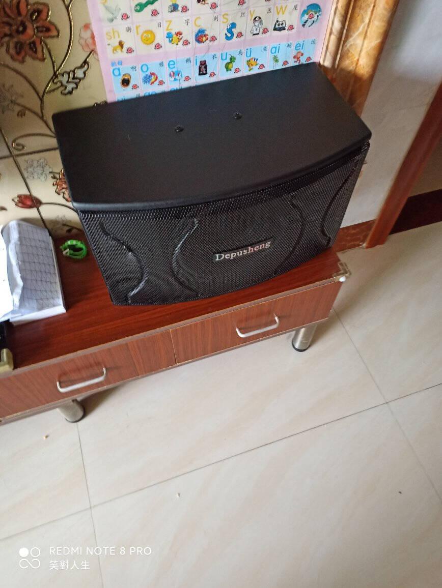 depusheng得普声D100家庭影院ktv音响套装10英寸包房家用客厅卡拉OK会议卡包音箱D100专业10寸卡包音响一对