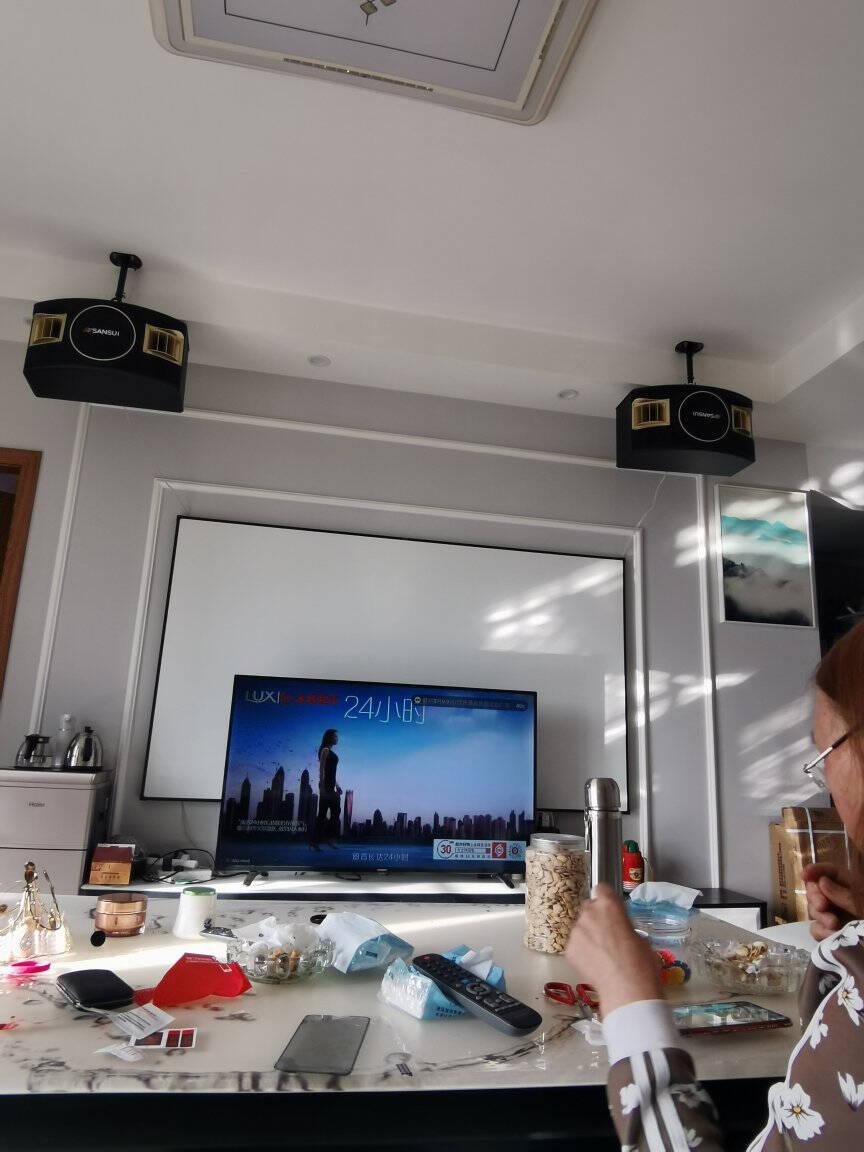 山水(SANSUI)SP2-10家庭ktv音响组合套装家庭影院双系统点歌机卡拉OK音箱全套装SP2-10卡包箱+山水双话筒+2T点歌机