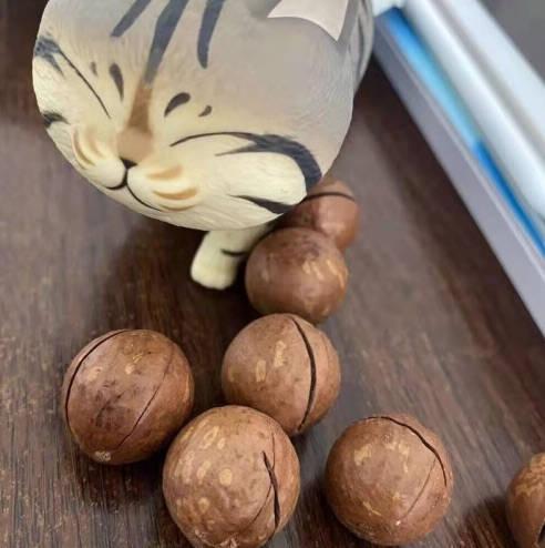 夏威夷果净重1000g奶油味坚果零食小吃整箱干果仁散装多规格可选罐装夏威夷果净重250g