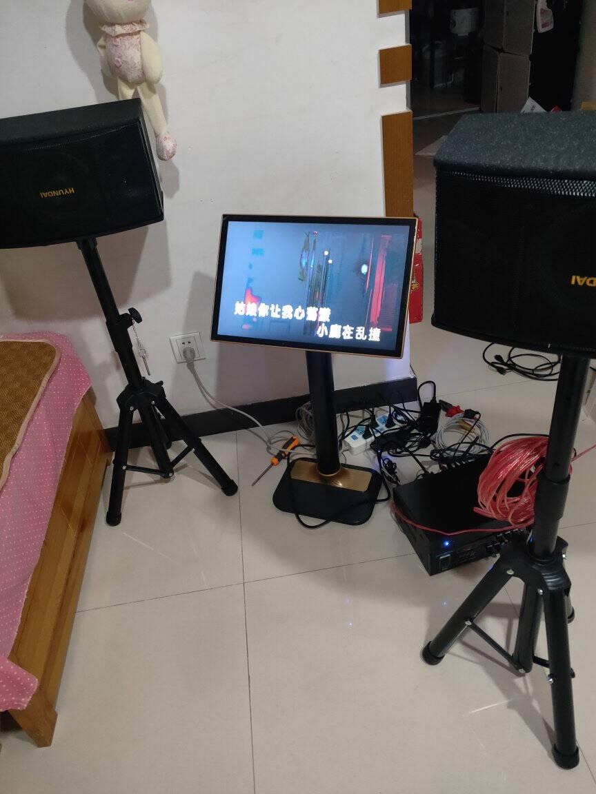现代(HYUNDAI)家庭KTV音响套装功放卡包卡拉ok家用K歌音响电视电脑蓝牙音箱组合6.5寸双高音音响套装(双无线话筒+双落地支架)