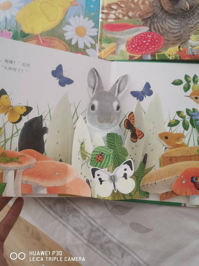 动物朋友神奇自然启蒙立体书(套装共4册)