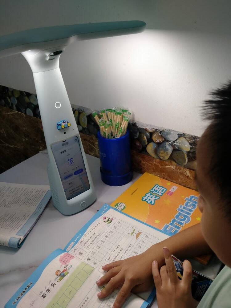 大力智能学习灯T6国AA级减蓝光护眼台灯家教机小学生学习辅导检查学生平板电脑大力神灯薄荷绿