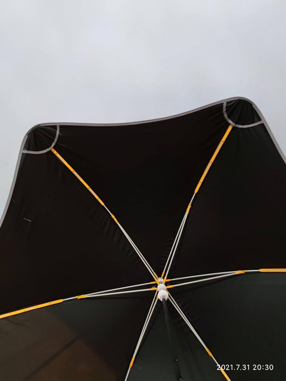 七麦麦圆角儿童雨伞太阳伞遮阳伞防晒伞带安全夜行反光条黑胶涂层防紫外线Q602沙漠恐龙