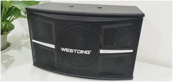 威斯汀(WESTDING)101家庭影院ktv点歌机音响组合功放套装家用卡拉OK6.5英寸低音101+102功放+H6点歌机(2T)