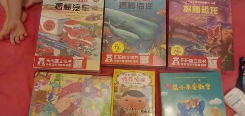 3-6岁少儿揭秘科普翻翻书(套装共12册)揭秘系列好玩又好学乐乐趣童书出品