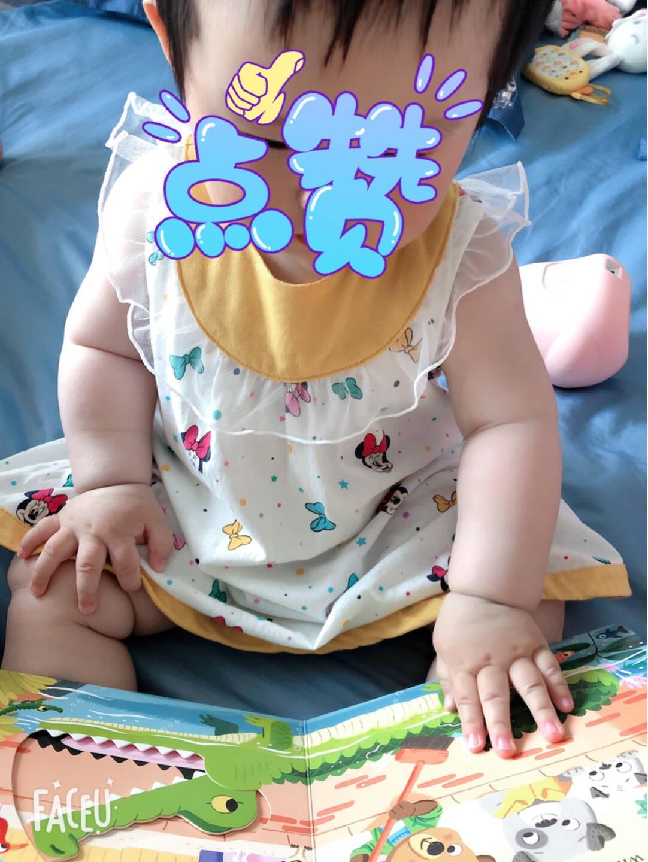 包邮小熊很忙系列(新版全20册)本吉戴维斯著中信出版社图书