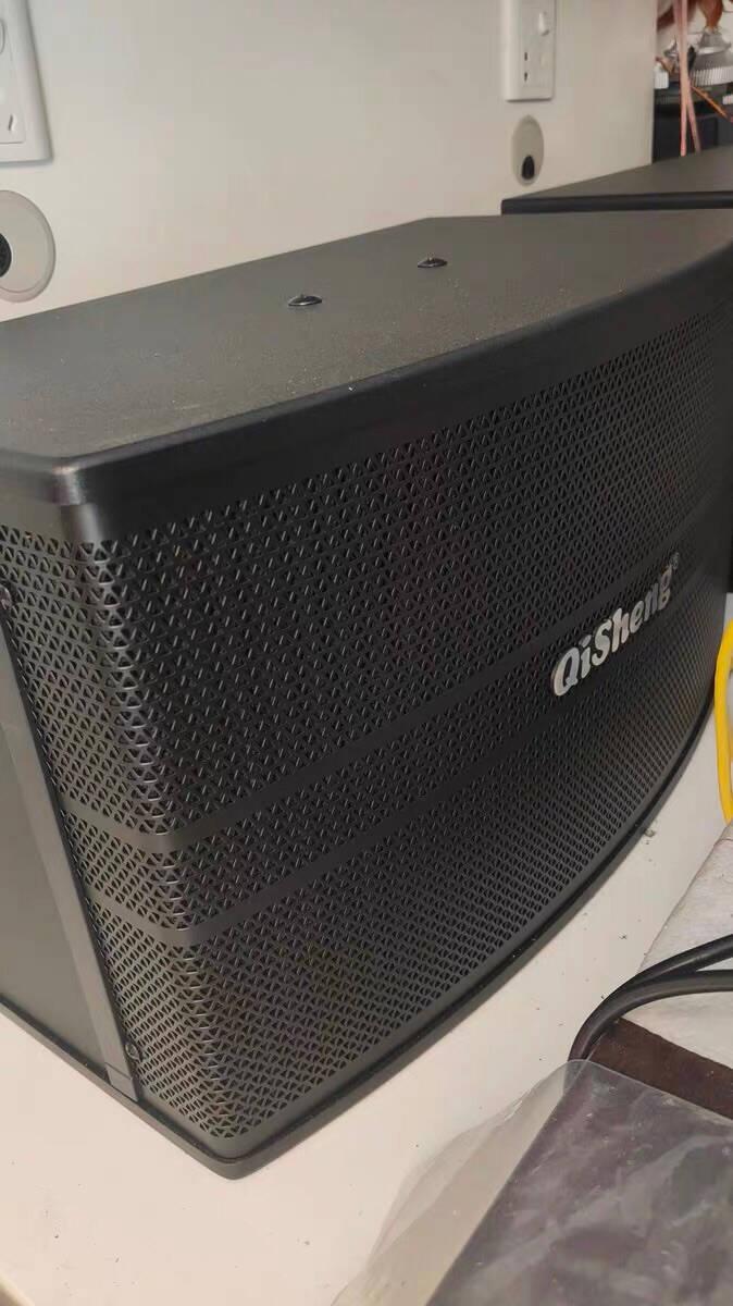 奇声(qisheng)家庭ktv音响套装点歌机卡拉ok点唱机家用蓝牙大功率功放机家庭影院K歌电视音箱10寸音响+11.6寸点歌机+充电话筒