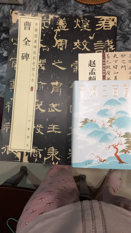 曹全碑(中华经典碑帖彩色放大本)