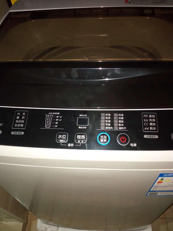 TCLXQB55-36SP5.5公斤全自动波轮洗衣机大5kg模糊控制小6单脱水模糊控制亮灰色