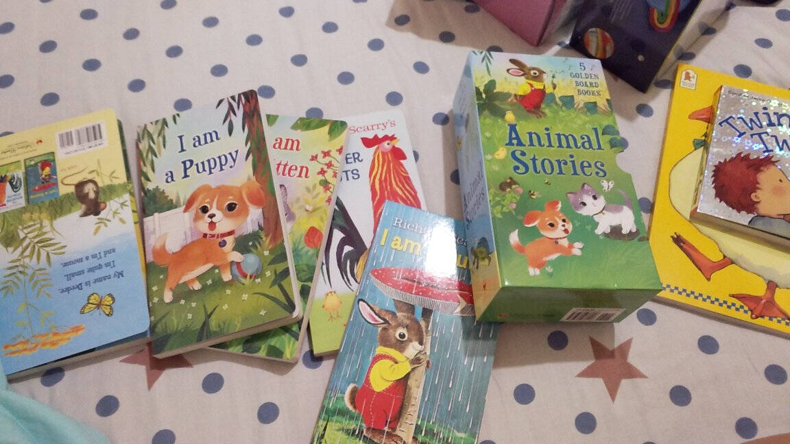 IamaBunny英文原版童书绘本我是一只兔子5册纸板书幼儿启蒙认知常青藤爸爸书单
