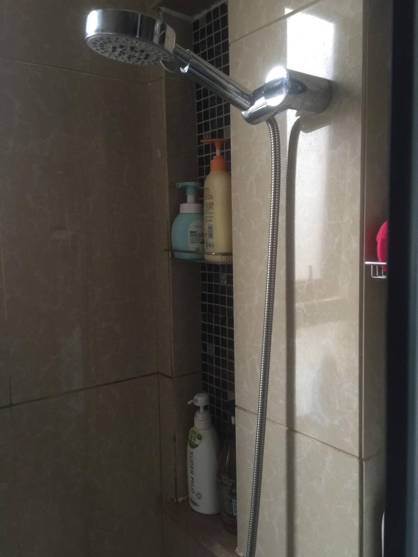 德众(DZ)60552米铜头花洒软管双扣防脱扣淋浴喷头管标准通用4分