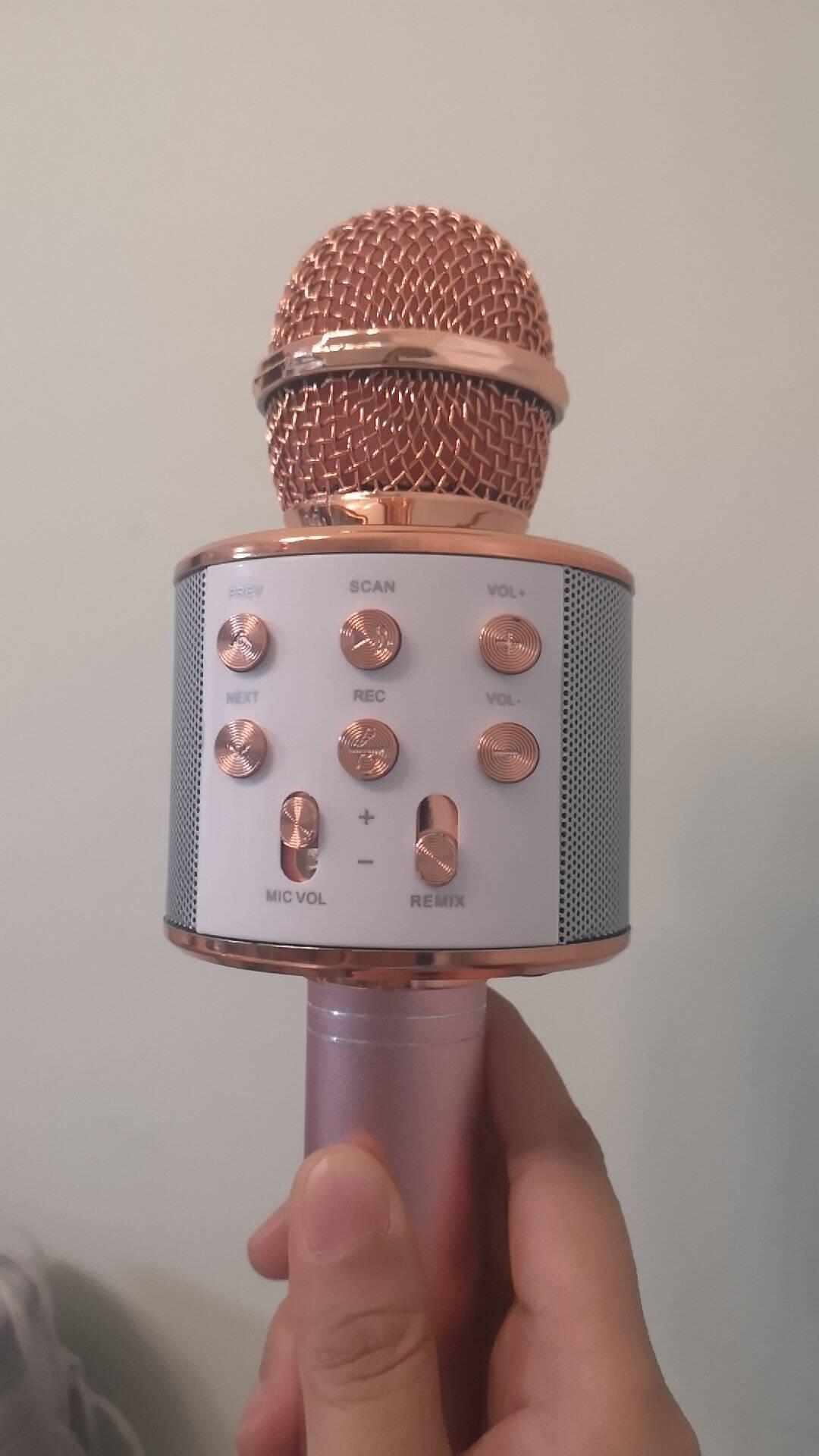 e之音WS858手机儿童麦克风音响话筒一体K歌华为苹果手机k歌宝无线蓝牙麦克风变音器WS858玫瑰金