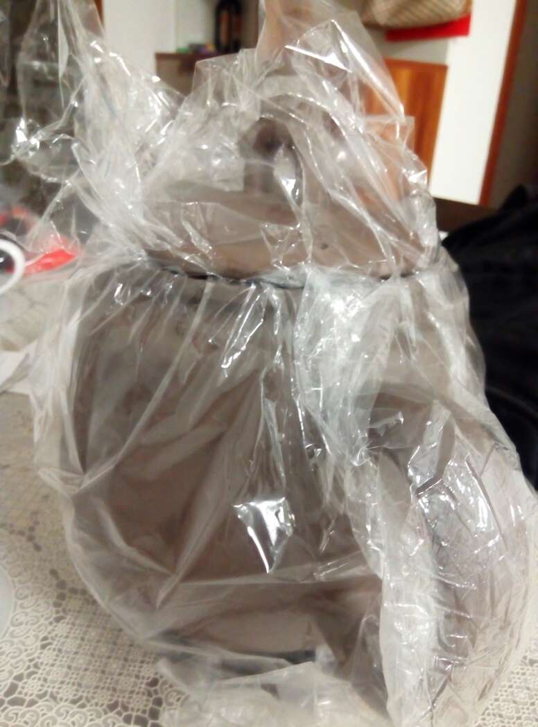 lunarglide 5 00988754 bags