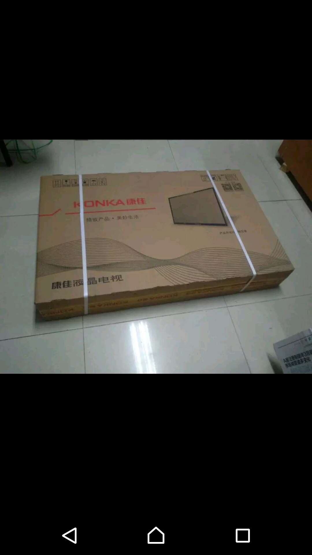 pumps shoes 00270775 cheapestonline