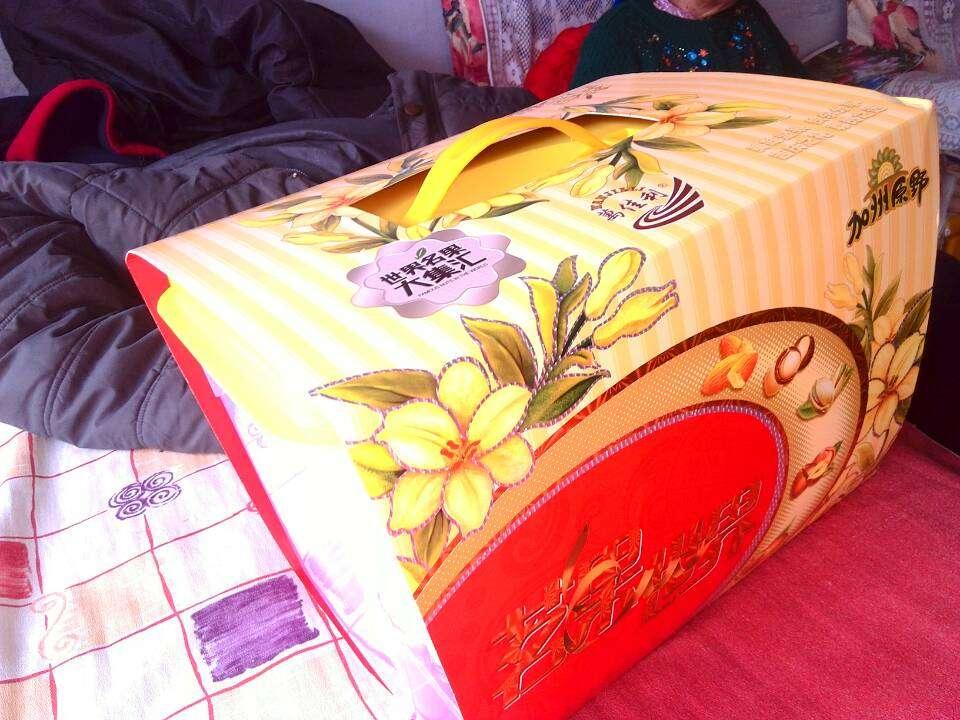 womens shoes 5.0 00974339 shop