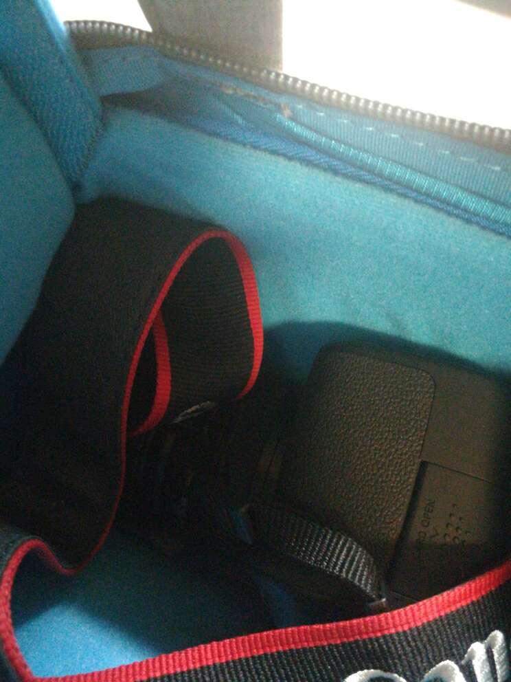 日本宜丽客(ELECOM)单反相机包双肩时尚旅行数码摄影摄像微单背包奔跑吧同款baby樱花粉M(中号)预售