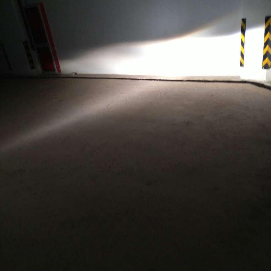free 5.0+ shield dark loden/volt/pure platinum/black 00295524 onlinestore