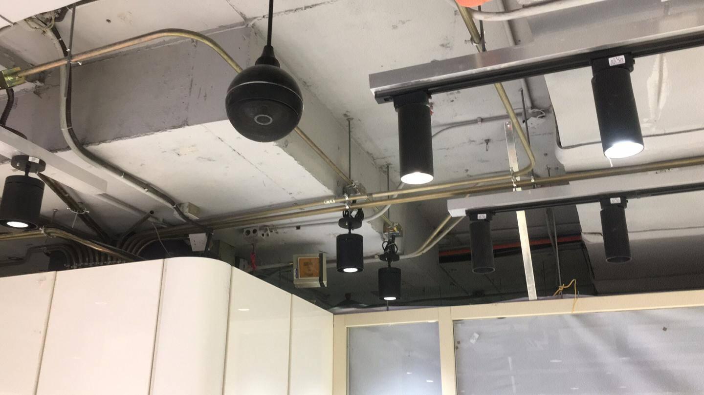 菱声(LINGSHENG)吊球音响吸顶音箱天花吸顶喇叭套装吊顶超市广播系统商场背景音乐吊球喇叭
