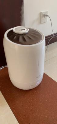 德尔玛DEM-F600(白色)和小熊JSQ-A50U1到底有本质区别吗?哪款雾量好调,哪个多档可调