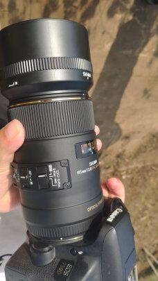 适马105mm F2.8 EX DG OS HSM MACRO靠谱吗?清晰度高不高?色彩饱满吗