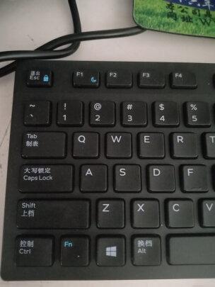 DELL KB216+MS116与惠普CS10有区别吗?做工哪个更加好,哪个结实耐用?