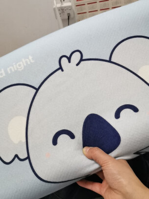 佳奥J17B01AS9跟京东京造泰国天然乳胶枕波浪款到底区别是什么?做工哪款更加好?哪个优质好用