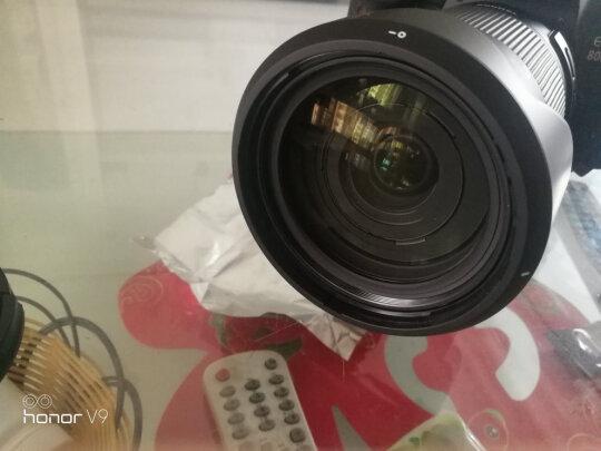腾龙18-400mm靠谱吗?对焦够准吗?十分漂亮吗?